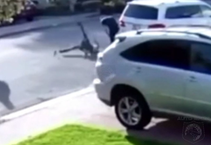 VIDEO: ARMED Carjacker Gets WWF'd By Would-Be Victim!