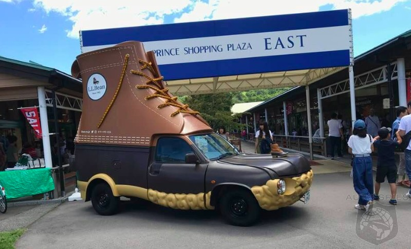 MEME THIS: What Do YOU Make OF This Weird And Wonderful DUCK Boot Shoe/Car/Thing?