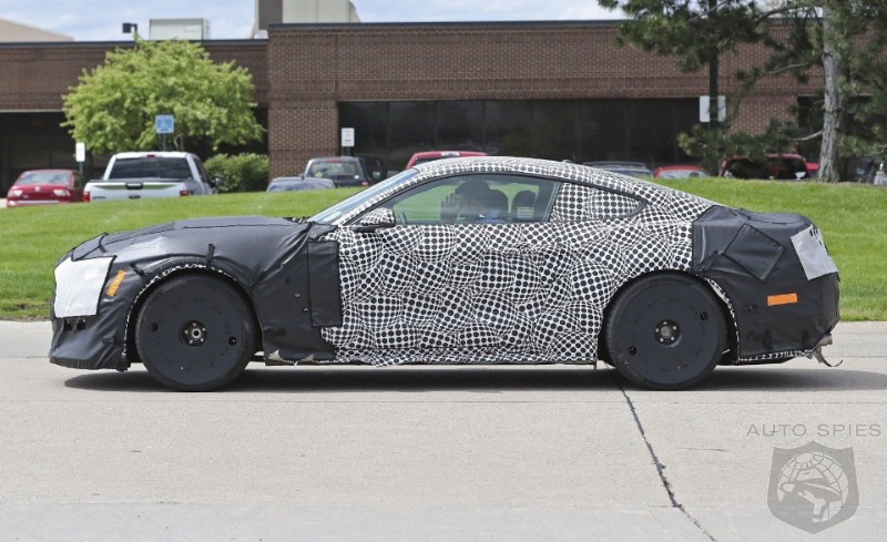 2019 Ford Shelby GT500 Mustang - SPIED! The newest spy photos!